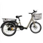 bici-electrica-monty-triciclo-e132-aluminio-color-champan-cincobikes-cm5-murcia-01